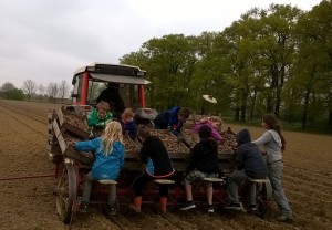 Kartoffelernte Lenßenhof